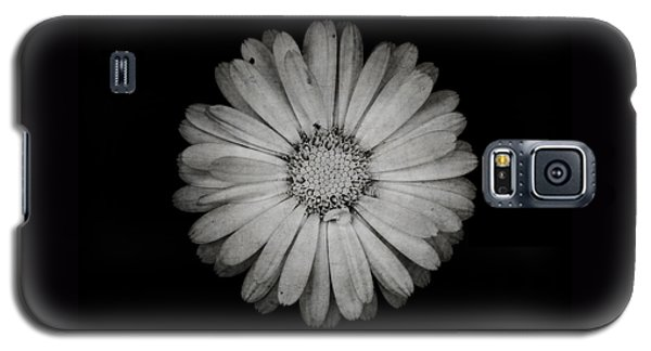 Calendula Flower - Textured Version Galaxy S5 Case by Laura Melis