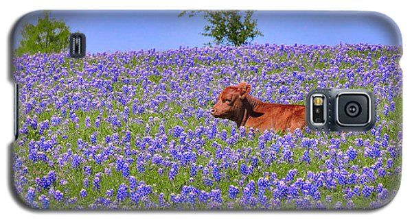 Galaxy S5 Case featuring the photograph Calf Nestled In Bluebonnets - Texas Wildflowers Landscape Cow by Jon Holiday