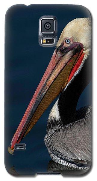 Galaxy S5 Case featuring the photograph California Brown Pelican Portrait by Ram Vasudev