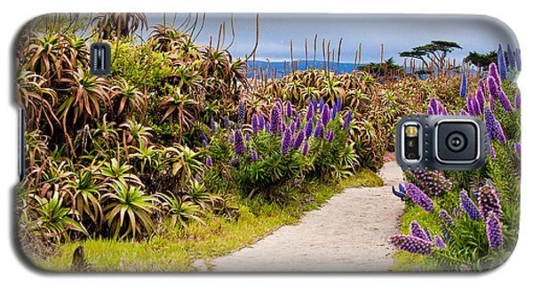 California Coastline Path Galaxy S5 Case by Melinda Ledsome