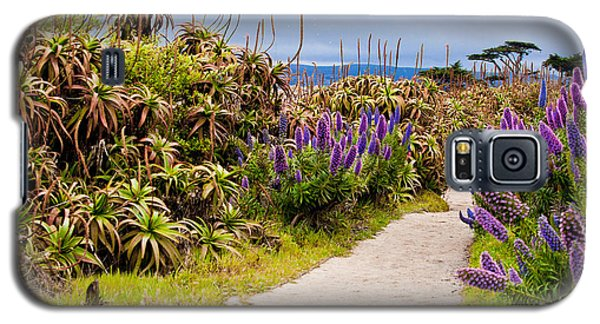 California Coastline Path Galaxy S5 Case