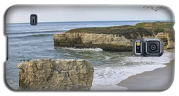 California Cove Galaxy S5 Case