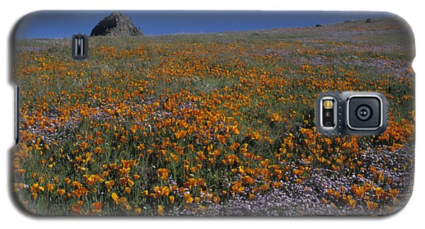 California Gold Poppies And Baby Blue Eyes Galaxy S5 Case by Susan Rovira