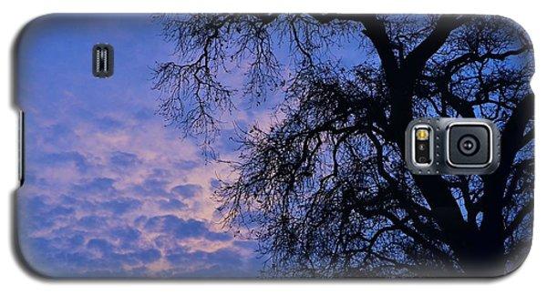California Oak Sunrise Galaxy S5 Case