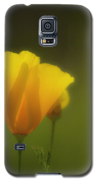 Galaxy S5 Case featuring the photograph California Poppies 2 by Sherri Meyer