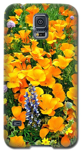 Galaxy S5 Case featuring the photograph California Poppies And Betham Lupines Southern California by Dave Welling