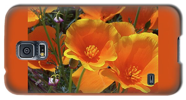 California Poppies Galaxy S5 Case by Ben and Raisa Gertsberg