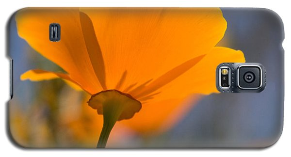 Galaxy S5 Case featuring the photograph California Poppy by Chris Scroggins