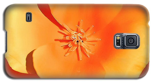 California Poppy Painting Galaxy S5 Case