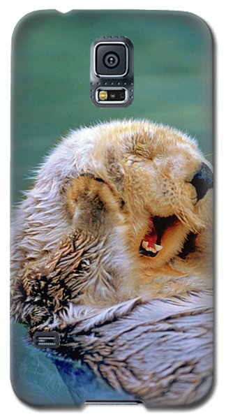 Otter Galaxy S5 Case - California Sea Otter Floating Face Up by Stuart Westmorland