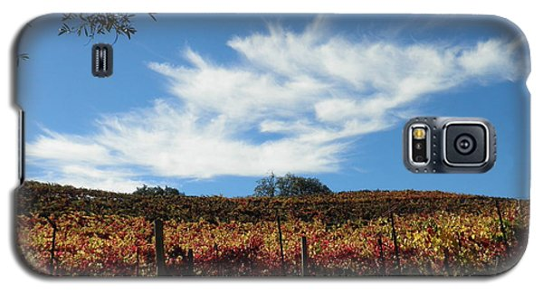 Galaxy S5 Case featuring the photograph California Vineyard by Suzanne McKay