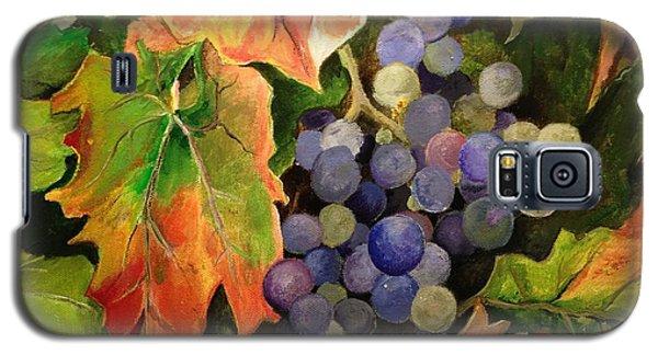 California Vineyards Galaxy S5 Case