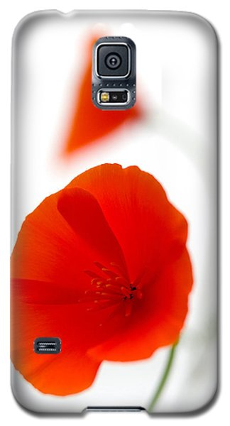 Californian Poppies 2 Galaxy S5 Case