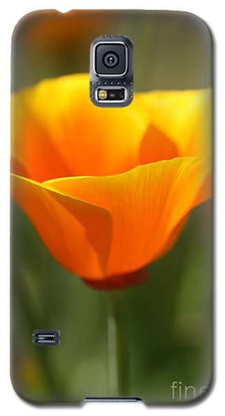 Galaxy S5 Case featuring the photograph Californian Poppy by Joy Watson