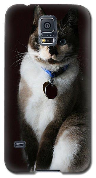 Calista Galaxy S5 Case by Judy Whitton