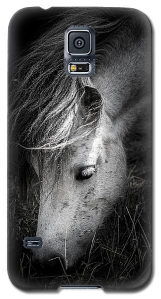 Call Me The Wind Galaxy S5 Case by Shane Holsclaw