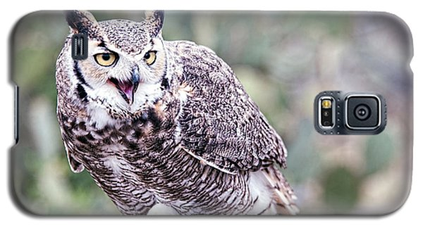 Galaxy S5 Case featuring the photograph Call Of The Owl by Dan McManus