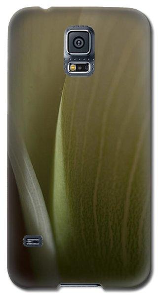 Calla Galaxy S5 Case