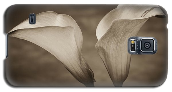 Calla Lilies In Sepia Galaxy S5 Case by Sebastian Musial