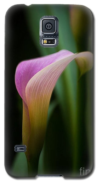 Calla Lilly Galaxy S5 Case by Rima Biswas