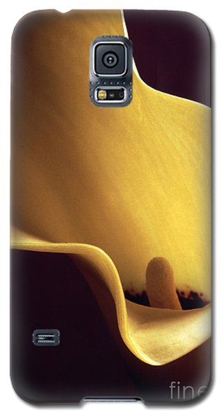 Galaxy S5 Case featuring the photograph Calla Lily Close Up by Liz Leyden