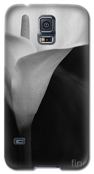 Calla Lily Corner Galaxy S5 Case