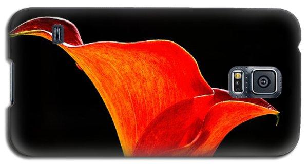 Calla Lily High Contrast Galaxy S5 Case