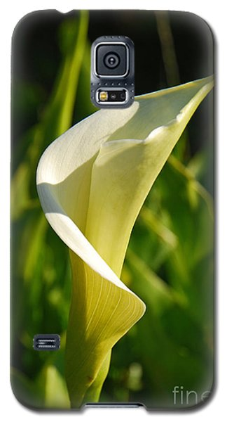 Galaxy S5 Case featuring the photograph Calla Lily by Mary Carol Story