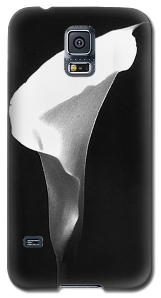 Calla Lily Galaxy S5 Case