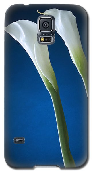 Calla Lily On Blue Galaxy S5 Case