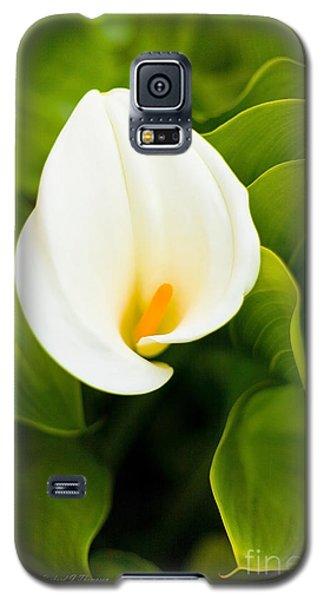 Calla Lily Plant Galaxy S5 Case