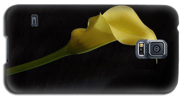 Calla Lily Yellow II Galaxy S5 Case