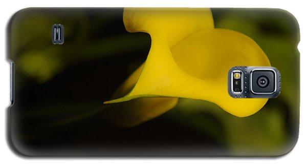 Calla Lily Yellow IIi Galaxy S5 Case