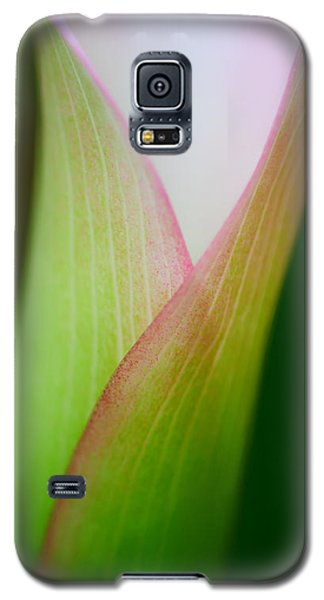 Galaxy S5 Case featuring the photograph Calla Lily by Zoe Ferrie