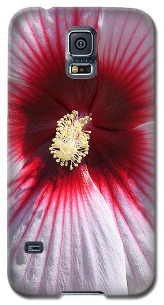 Callaway Gardens Hibiscus Galaxy S5 Case