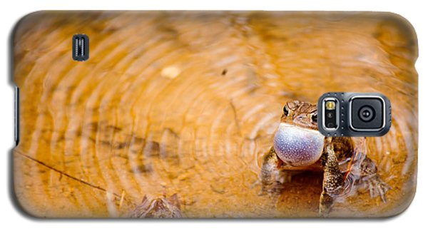 Calling All Frogs Galaxy S5 Case
