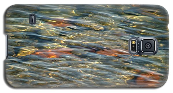 Galaxy S5 Case featuring the photograph Calming Waters by Susan  Dimitrakopoulos