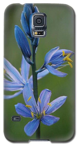 Camas Galaxy S5 Case