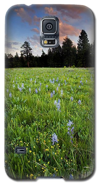Camas Sunset Galaxy S5 Case