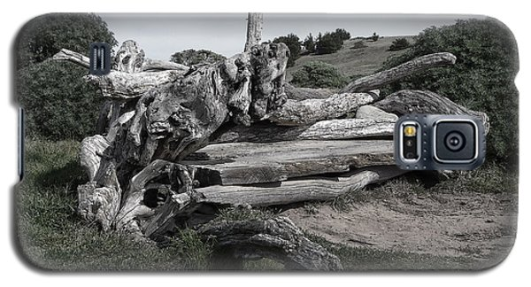 Cambria Driftwood Bench 3 Galaxy S5 Case