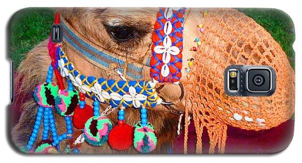 Camel Fashion Galaxy S5 Case by Julia Ivanovna Willhite