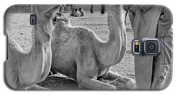 Camel Market, Morocco, 1972 - Travel Photography By David Perry Lawrence Galaxy S5 Case by David Perry Lawrence