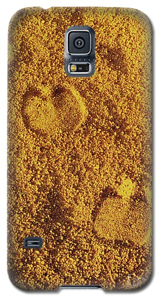 Camel Prints In The Sand Galaxy S5 Case
