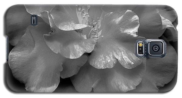 Camelia Galaxy S5 Case