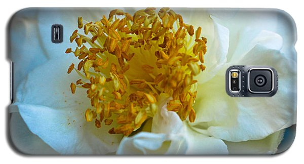 Galaxy S5 Case featuring the photograph Camellia by Julie Andel