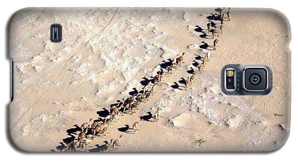 Camels Walking In Desert Galaxy S5 Case