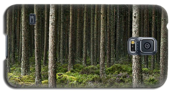 Camore Wood Scotland Galaxy S5 Case