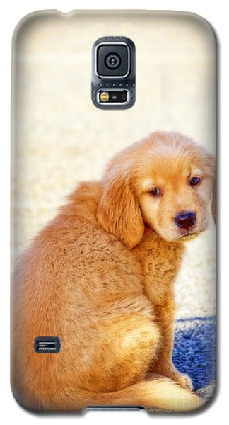 Can I Play Too Galaxy S5 Case