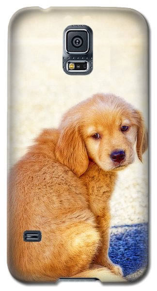 Can I Play Too Galaxy S5 Case by Eleanor Abramson