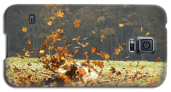 Galaxy S5 Case featuring the photograph Can You See Me? by Carol Lynn Coronios